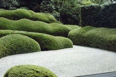 Cloudlike pruned evergreen planting als Thema im Garten Boxwood Landscaping, Boxwood Garden, Garden Hedges, Topiary Garden, Formal Gardens, Outdoor Gardens, Landscape Architecture, Landscape Design, Formal Garden Design