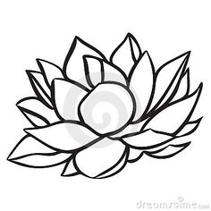 Lotus Stock Images - Image: 15264844 flower for the koi quilt