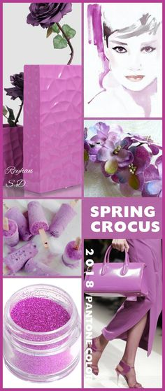 Types of Houseplant Bugs and Methods to Check Their Infestation '' Spring Crocus - 2018 Pantone Color '' By Reyhan S. Color Trends 2018, 2018 Color, Shades Of Purple, Pink Purple, Magenta, Paint Color Schemes, Little Boy Blue, Color Collage, Mood Colors