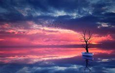 Фото обои лодка, отражение, природа, дерево, птицы, вода, небо, пейзаж, закат