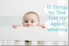 Here are 15 things I knew about weaning after almost 20 months of breastfeeding: People warn you about all kinds of things when you're pregnant. Things you want to hear and a lot of things you don'… Weaning Breastfeeding, Stopping Breastfeeding, Breastfeeding And Pumping, The Joys Of Motherhood, Baby Kids, Baby Boy, Solids For Baby, Baby Led Weaning, Weaning Toddler