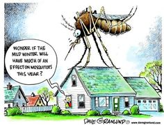 25 Best Mosquito Humor Images Jokes Quotes Funny Cartoons Funny