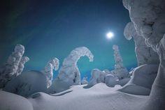 Ezek a csodálatos fotók bebizonyítják, hogy Lappföldön a legszebb a tél nyolcadik oldal