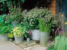 kleine zimmerrenovierung hutte idee schrebergarten, 60 besten garden ideas bilder auf pinterest | blumengarten, blumen, Innenarchitektur