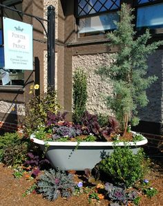An old bathtub serves as a large planter in downtown Asheville, North  Carolina.