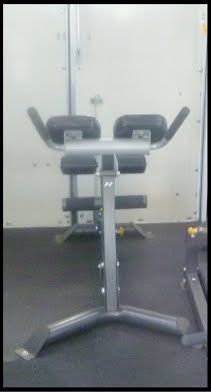 Mobile Gym low back extension