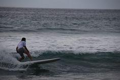 Point Dume in Süd-Kalifornien. Mega-Tag mit unendlich vielen Delfinen.