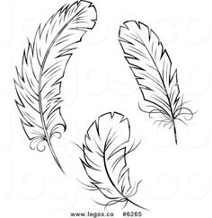 Royalty Free Clip Art Vector Logos of Black and White Feathers