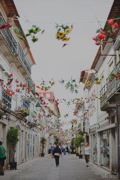 Hanging flowers. country stories :: viana do castelo