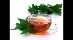 Nettle Tea Health Benefits