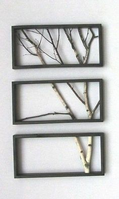 Cute Tree Branches in Frame