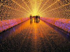 Winter Light Festival (Japan)