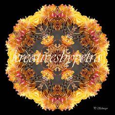 Mandala ''Blume gelborange''  kreativesbypetra  #mandala #mandalas #mandalaart #mandalastyle #inspiration #innereruhe #spirit #blume #flowers Mandala Art, Petra, Wreaths, Fall, Decor, Mandalas, Mosaics, Canvas, Autumn