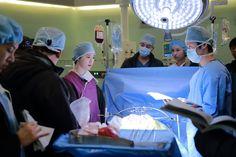 Blood Blood Korean Drama, Hospital Doctor, Kdrama, Medical, Doctors, Medicine, Med School, Active Ingredient, The Doctor