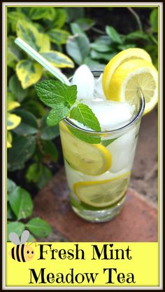 Pennsylvania Dutch Meadow Tea - A simple, refreshing drink made from fresh mint.