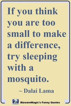 If you think you are too small to make a difference, try sleeping with a mosquito. ~ Dalai Lama  #funny #funnyquotes #quotes #quotestoliveby #dailyquote