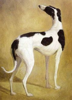 Jacques Laurent Agasse (1767~1849)  Study of a Greyhound