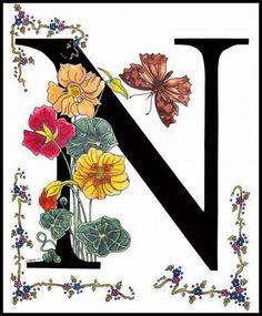 325 Best N Nadine Images Calligraphy Letter N Alphabet Letters