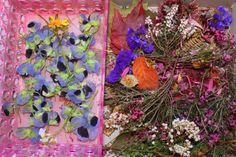 Fleurs séchées plastifiées : coeur et papillon » croquelavieenrose.fr - La petite vie en rose d'Anouk, Maïa et Azia.