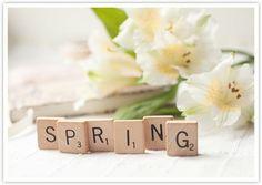 Dziś wiosna tylko w takim wydaniu