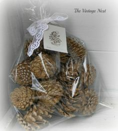 The Vintage Nest: How to Bleach Pine Cones ~ Shabby Decorating