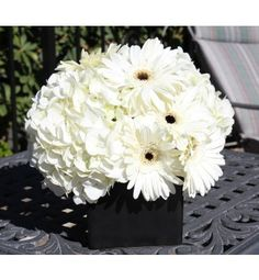white gerbera flowers - Google Search