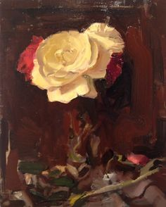 katy schneider white and red roses   2012