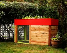 Kippen House chicken coop with rooftop veggie patch...great idea