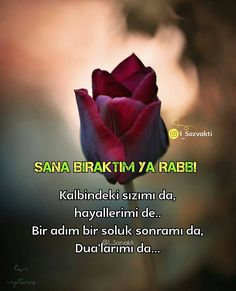 Islam Muslim, Allah, Quotations, My Books, Wisdom, Instagram, Photos, Frases, Pictures