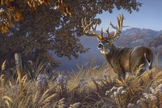 Whitetail Deer Paintings | BuckTracker: Tribute to a Trophy