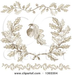 Clipart of Engraved Acorn and Oak Leaf Design Elements - Royalty Free Vector Illustration by Any Vector Acorn Drawing, Leaf Drawing, Free Vector Illustration, Vector Art, Bruder Tattoo, Kranz Tattoo, Oak Leaf Tattoos, Mini Mundo, Acorn And Oak