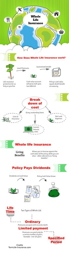 In our whole life insurnace graphic we break down the pieces of a whole life in. In our whole life insurnace graphic w. Buy Life Insurance Online, Life Insurance Premium, Long Term Care Insurance, Term Life Insurance, Life Insurance Companies, Insurance Broker, Insurance Marketing, Health Insurance, Insurance Business