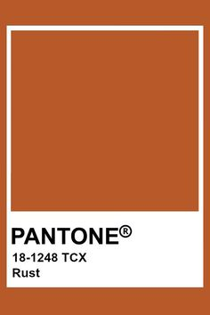 The bride choose Rust orange instead of bright orange to complement the fall season and muted sunset theme. Paleta Pantone, Pantone Orange, Pantone Tcx, Pantone Swatches, Color Swatches, Paint Swatches, Rust Color Paint, Paint Colors, Pantone Colour Palettes