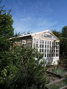 Another view of our recuperated glass window greenhouse.