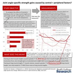 "Chris Beardsley na Twitterze: ""Very important study for understanding why strength gains are joint angle-specific (and also why partials are not great for hypertrophy) https://t.co/Ccxv7HQqw9"""