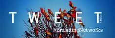Tweet #BrandingNetworks