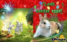 Easter Eggs, Rabbit, Animals, Animales, Animaux, Rabbits, Bunny, Bunnies, Animal