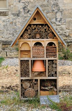 Insect Hotel! Perfect for kids to explore and discover different itty bitty insects!