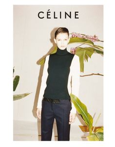 The Passion for Fashion: Celine Fall 2011 ad campaign