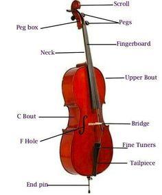 Parts of a cello