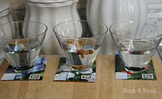 snip seeds, soak and plant for faster germination