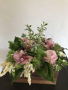 Spring Flower Arrangements, Orchid Arrangements, Succulent Arrangements, Spring Flowers, Phalaenopsis Orchid, Orchids, Small Flowers, Beautiful Flowers, Art Floral
