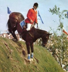 Show Jumping Horses, Power Animal, Horse World, Horse Love, Horse Tack, Olympic Games, Back In The Day, Childhood Memories, Equestrian