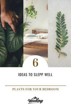 Welche Pflanzen gehören ins Schlafzimmer? Die Woodkings schlagen einfach mal ein paar vor ... #pflanzen #schlafzimmer #pflanzenschlafzimmer #bedroom #schlafzimmerideen
