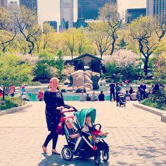Stroller Review: Joovy Too Qool | My Strange Family Best Double Stroller, Double Strollers, Strange Family, Second Child, Tandem, Second Baby, Tandem Bikes