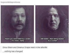 ImageFind images and videos about harry potter, severus snape and sirius black on We Heart It - the app to get lost in what you love. Harry Potter Welt, Harry Potter Jokes, Harry Potter Fandom, Severus Hermione, Severus Rogue, Draco, Bellatrix, Hogwarts, Funny Harry Potter