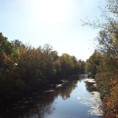 Die Sonne ist zurück und glitzert auf dem Wasser #Herbst #Spaziergang #Walking