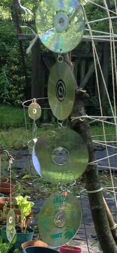 Reusing old CD's - How to keep birds out of the garden | 1 More Than 21 More Than 2 | Creative Ideas for Daily Living