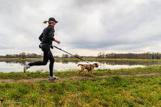 Trucs et astuces pour apprendre à courir avec son chien. Voici les solutions aux obstacles les plus fréquents pour courir avec son chien.