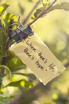 Where there is #life, there is #hope. - #quote